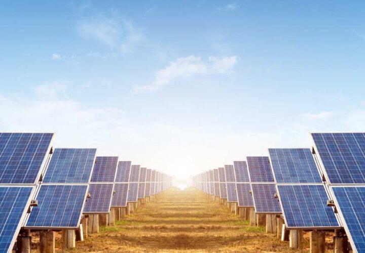 Solar Park Management – zdalne zarządzanie farmami fotowoltaicznymi